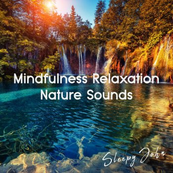Testi Mindfulness Relaxation Nature Sounds