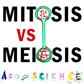 mitosis vs meiosis rap battle - Periodic Table Rap