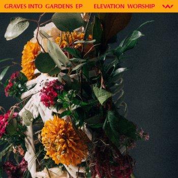Testi Graves Into Gardens - EP