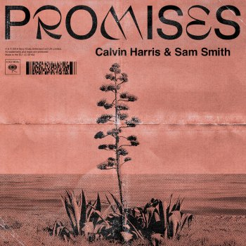Promises (with Sam Smith) lyrics – album cover
