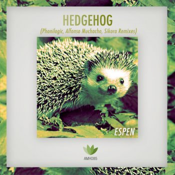 Testi Hedgehog