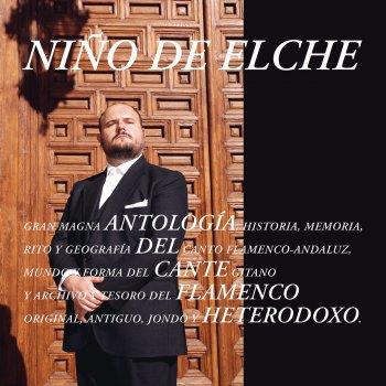 Testi Antología del Cante Flamenco Heterodoxo