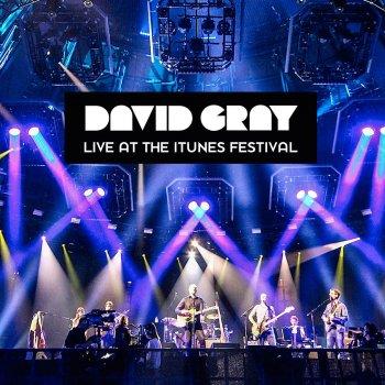 Testi Live at the iTunes Festival