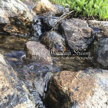Testi Rocky Mountain Stream