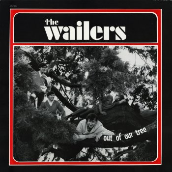 Testi The Wailers - Out of Our Tree