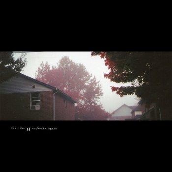 Testi Fog Lake / Euphoria Again