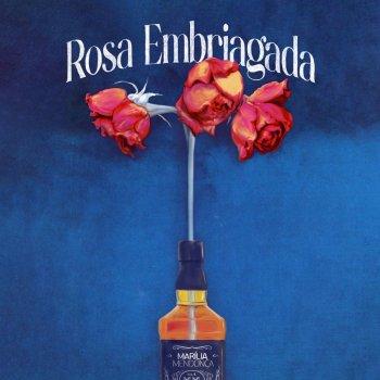 Testi Rosa Embriagada - Single
