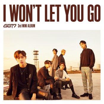 Testi I Won't Let You Go