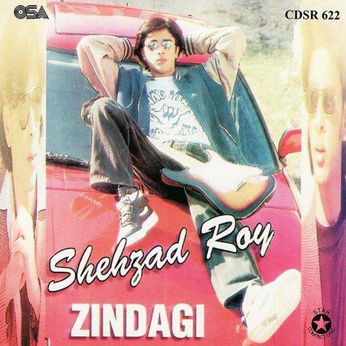 Shehzad Roy - Zindagi Lyrics   Musixmatch