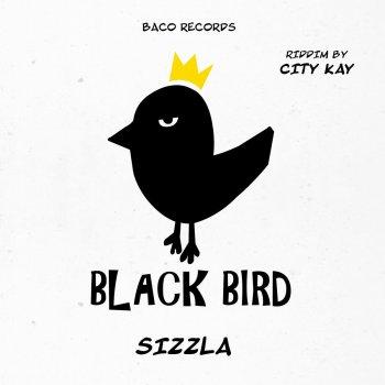 Testi Think Wise (Black Bird Riddim by City Kay)