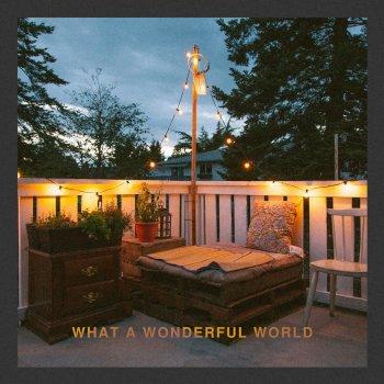Testi What A Wonderful World (Live Acoustic)