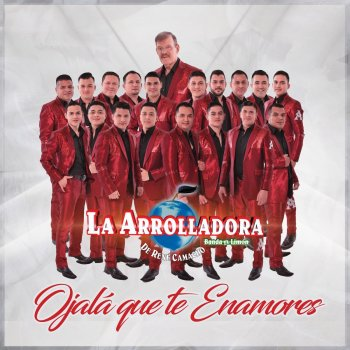 Ojalá Que Te Enamores - Single - cover art