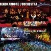 'O Sarracino ( live)