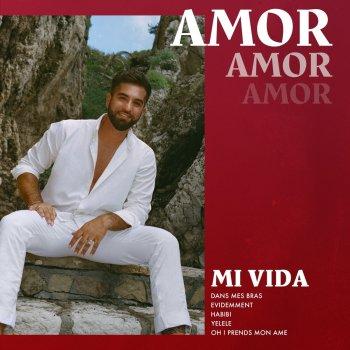 Testi Mi vida : Chansons d'amour