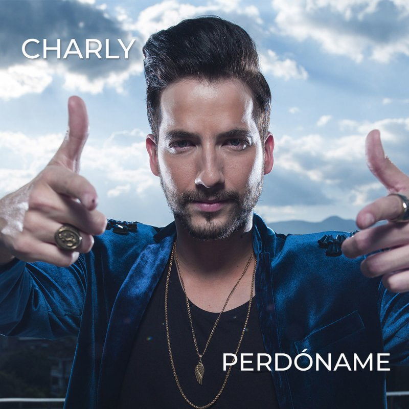Charly Perdóname Lyrics Musixmatch