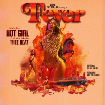 Cash Shit by Megan Thee Stallion feat. DaBaby - cover art