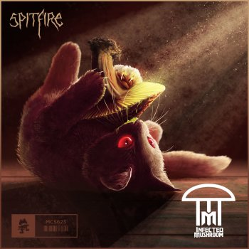 Testi Spitfire