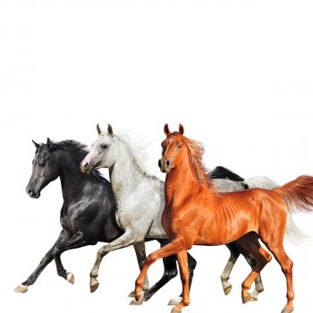 Old Town Road - Diplo Remix by Lil Nas X feat. Billy Ray Cyrus & Diplo - cover art