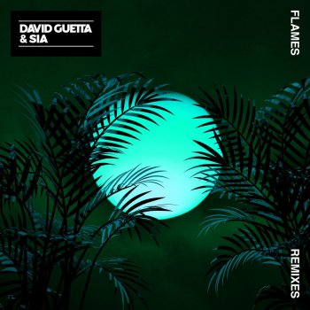Flames (David Guetta Remix) by David Guetta feat. Sia - cover art
