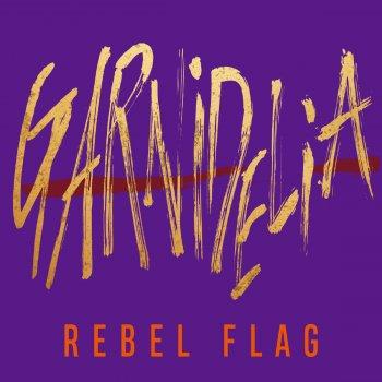 Testi REBEL FLAG