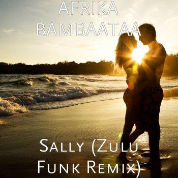 Testi Sally (Zulu Funk Remix)