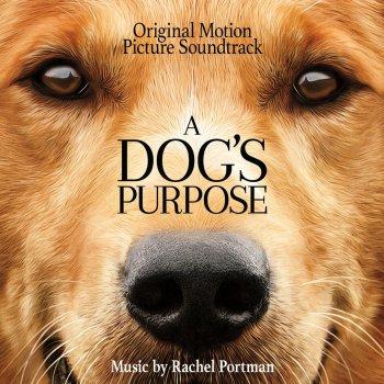 Testi A Dog's Purpose (Original Motion Picture Soundtrack)