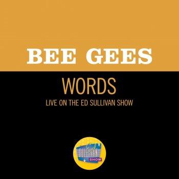 Testi Words (Live On The Ed Sullivan Show, March 17, 1968)