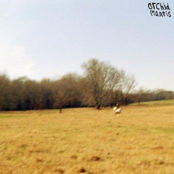 Testi Light As Leaving - EP
