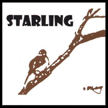 Testi Starling