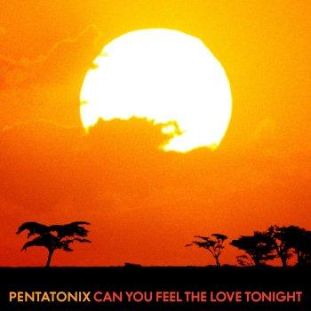 Testi Can You Feel the Love Tonight