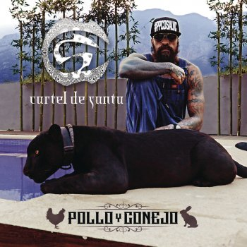 Pollo y Conejo lyrics – album cover