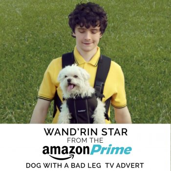 "Wand'rin' Star (From the ""Amazon Prime - Dog With a Bad Leg"" TV Advert) [Remastered] - cover art"
