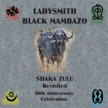 Shaka Zulu Revisited: 30th Anniversary Celebration - cover art