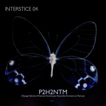 Testi P2H2NTM (Interstice 4) - Single [Paysage hybride d'histoires numériques naturelles terrestres et marines]
