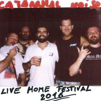 Testi Live all'Home Festival 2016