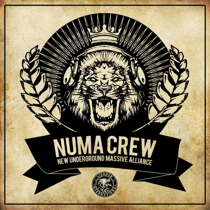 Numa Crew feat  Dub FX - Bass Hater (feat  Dub FX) Lyrics