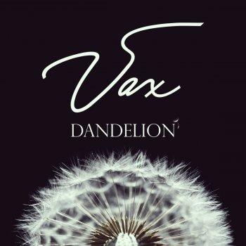 Testi Dandelion