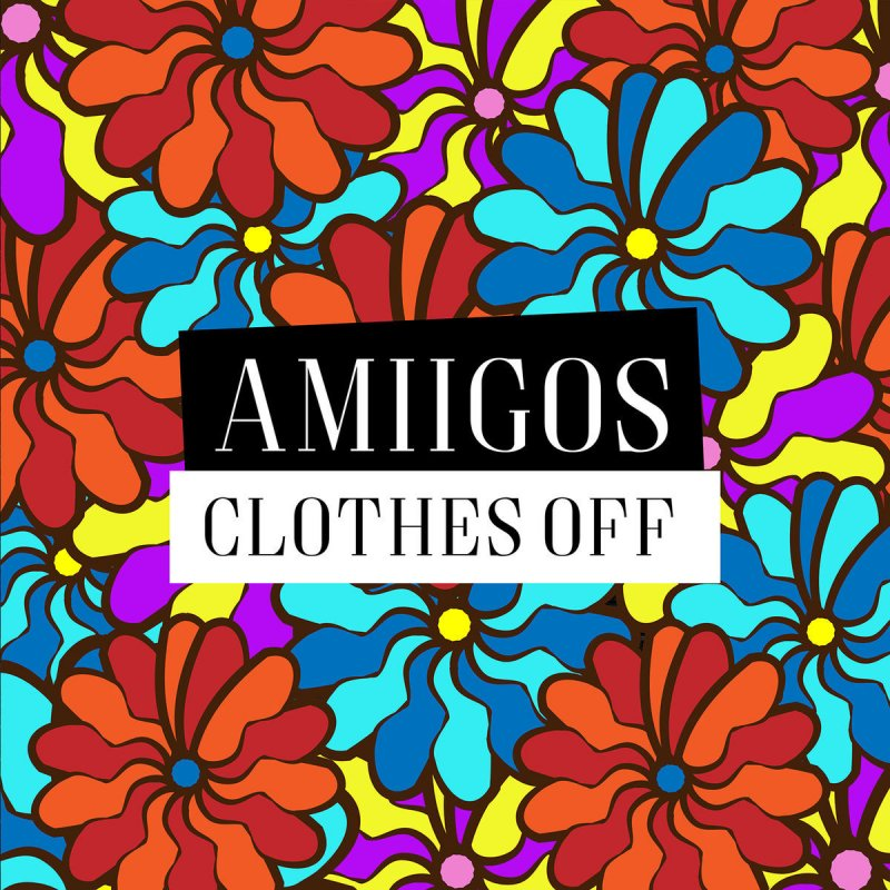 Image result for Amiigos CLothes off