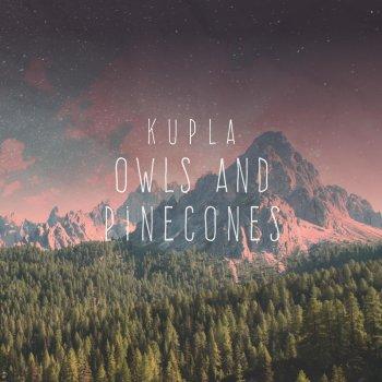 Testi Owls and Pinecones