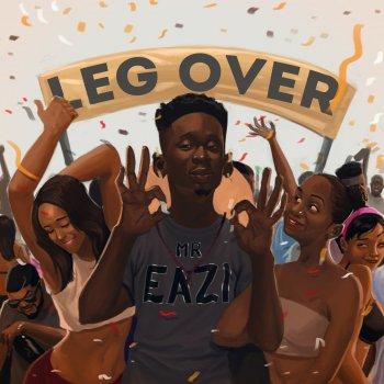 Image result for leg over cover art