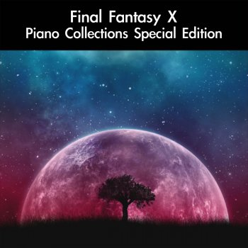 Testi Final Fantasy X/X-2 Complete Piano Collections: Special Edition