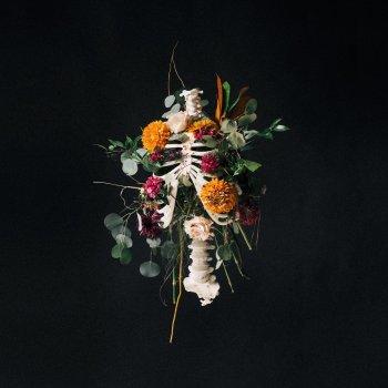 Testi Graves Into Gardens (Live)