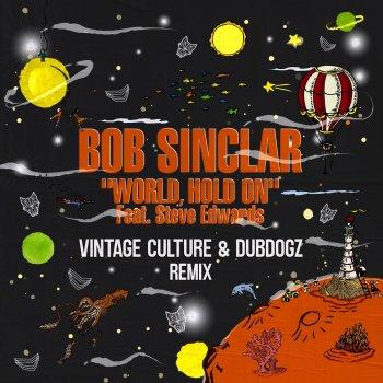 Testi World Hold On (feat. Steve Edwards) [Vintage Culture & Dubdogz Remix] [Radio Edit] - Single