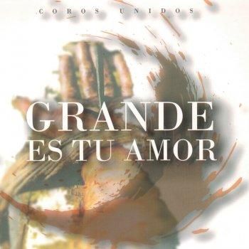 Letras Del álbum Grande Es Tu Amor De Coros Unidos Musixmatch El