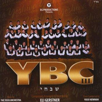 Testi YBC III - Shabichi