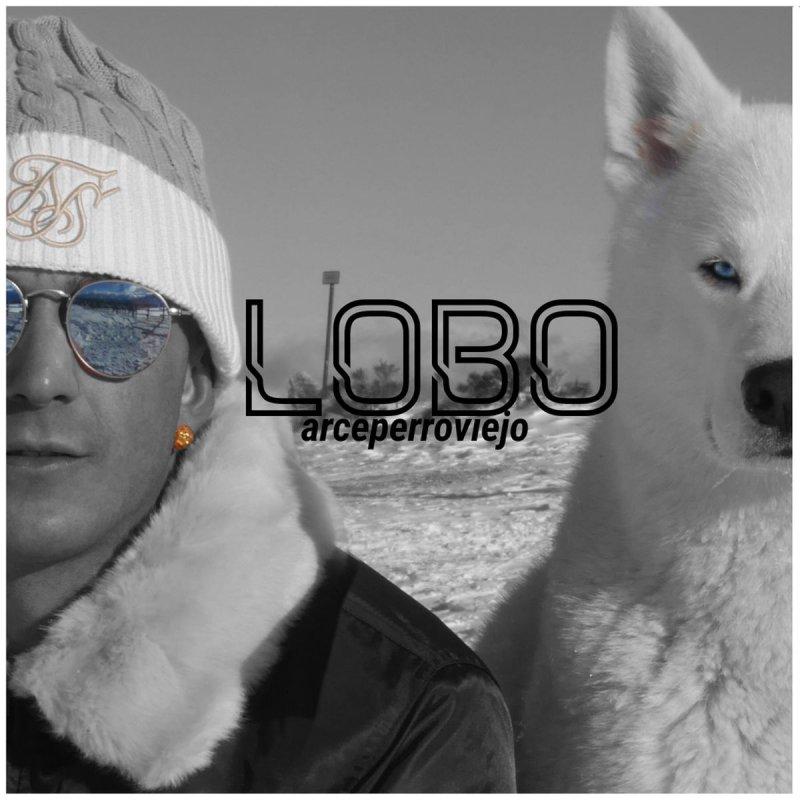 Arce - Lobo letra | Musixmatch