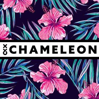 Testi Chameleon