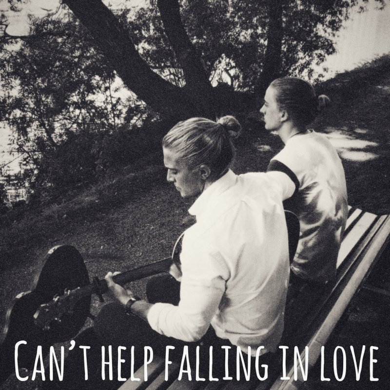 Hearts Colors Cant Help Falling In Love Lyrics Musixmatch