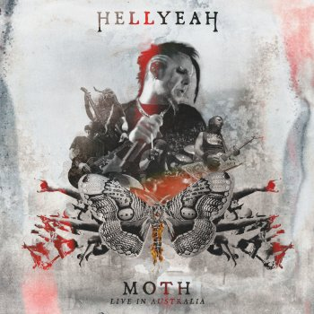 Testi Moth - Live
