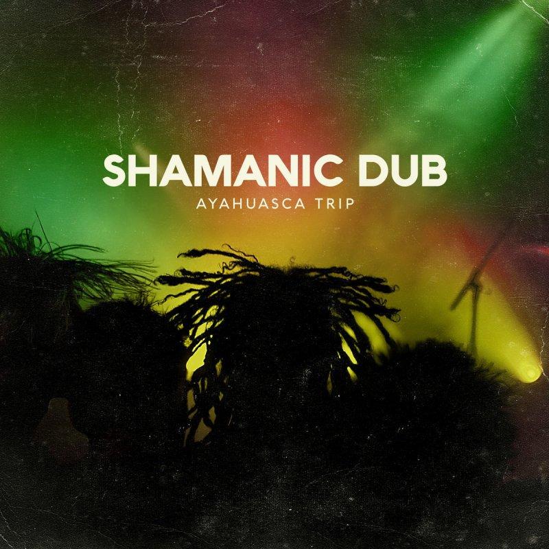 Letra de Ayahuasca Trip de Shamanic Dub | Musixmatch